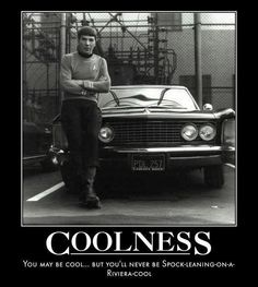 Everything is going to be okay. Spock is logically awesome.