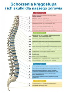schorzenia kregoslupa a skutki dla zdrowia