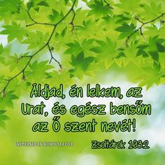 Lysa Terkeurst, Prayers, Herbs, Faith, God, Inspiration, Dios, Biblical Inspiration, Prayer