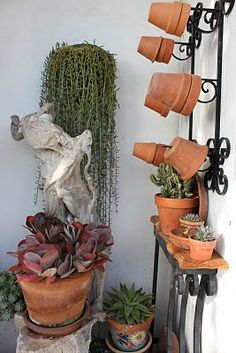 wall potting