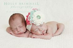 twins - AZ newborn photographer