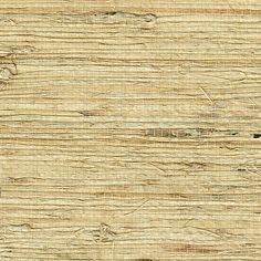 Grasscloth Extra Fine Arrowroot 1740 in Almond Use