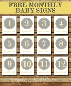 Free Printable Monthly Baby Signs   Freebie