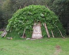 Irregular Shelters. Fascinating website with links to over 50 different styles of shelter.