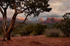 Sedona Vacation Rental - VRBO 376398 - 3 BR Canyon Country & Northeast House in AZ, Champagne Taste on a Beer Budget