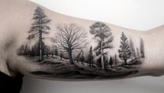 Tree Tattoo Designs Featured