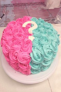 Revealing the gender of your unborn child (or children) will be a special event with these gender reveal party ideas. From cute snacks to creative gam Gender Reveal Food, Gender Reveal Pinata, Gender Reveal Cupcakes, Gender Reveal Decorations, Gender Party, Baby Gender Reveal Party, Baby Shower Cupcakes, Shower Cakes, Baby Announcement Cake