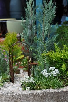 Container Fairy Gardens -  I apologize for the broken link... picture pinned for inspiration.