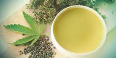 Comment Faire Votre Propre Pommade Au Cannabis ?