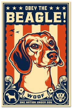 Obey the Beagle!  Need this for Lady's crate.  She thinks she is the ruler of our home.