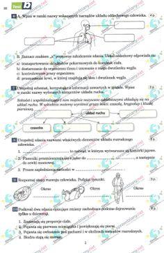 Internet Marketing, Online Marketing, Digital Marketing, Money Making Websites, Work From Home Jobs, Affiliate Marketing, Online Business, Web Design, Education
