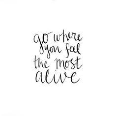 ᴬᴰᴬᴸᴵᴺᴱ adventures