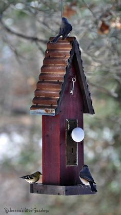 Each feeder is unique ♥ ~ weathered barn tin, antique hardware, vintage doorknob and skeleton key! Constructed of weather resistant ce. Rustic Bird Feeders, Large Bird Feeders, Unique Bird Feeders, Bird House Feeder, Hanging Bird Feeders, Bird Cages, Barn Tin, Vintage Birds, Bird Feathers