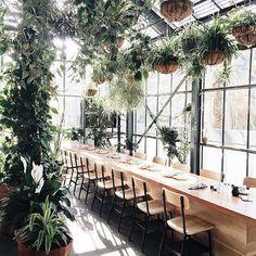 Greenhouse Wedding                                                                                                                                                      More