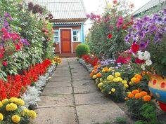 Gorgeous ideas of improving your dooryard by Dutch gardeners Garden Beds, Garden Paths, Garden Landscaping, Home And Garden, Beautiful Gardens, Beautiful Flowers, Inside Plants, Hand Flowers, Planting Vegetables