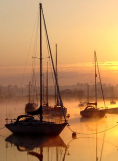 River Colne – Wivenhoe, England. Sunset, ships, water, reflection, golden, misty, mist, fog, beautiful, stunning, photograph, photo