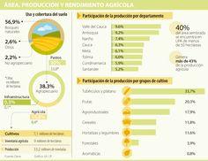 Valle, del Cauca, Antioquia y Nariño, departamentos líderes en producción