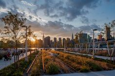 Hunter's Point South Park in New York City by ARUP, Thomas Balsley Associates, and Weiss / Manfredi. #landscape #architecture