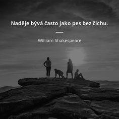 Naděje bývá často jako pes bez čichu. - William Shakespeare #psi #naděje