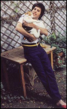 Freddie Mercury con uno de sus gatos