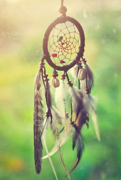 dreamcatchers, remind me of my Aunt Robin and the ones she's made for me. :)