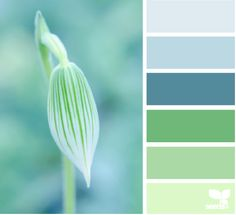 Design-Seeds Nature Hues repinned by www.pcPolyzine.com.