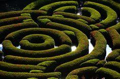love mazes!