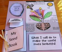 Seed/ flower lapbook - Gardening and Plant Science Science Resources, Science Lessons, Science Activities, Science Projects, Life Science, Science And Nature, Science Experiments, Science Topics, Science Biology