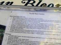 Reader Rock Garden (Calgary) - All You Need to Know Before You Go - TripAdvisor Reader Rock Garden, Garden Cafe, Calgary, Vacation Ideas, Need To Know, Trip Advisor, Summer, Summer Time, Travel Ideas