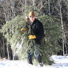 First Christmas Tree Hunt
