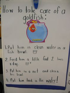 How to writing - class activity (shared writing) for first grade