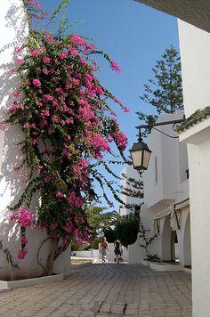 Beautiful street in Port El Kantaoui, Tunisia