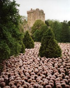 Spencer Tunick - Spencer Tunick 74 - ALAFOTO GALLERY