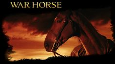 War Horse is a 2011 epic war film adaptation of War Horse, a 1982 children's novel set before and during World War I, by British author Michael Morpurgo, and the 2007 stage adaptation of the same name. It was directed by Steven Spielberg. Steven Spielberg Movies, Horse Movies, Michael Morpurgo, Horse Wallpaper, War Film, Equine Art, Movie Photo, Wild Horses, Beautiful Horses