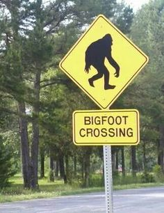 LeFlore County. Most reported 'Bigfoot' sightings.