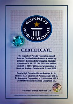 Fondation Intelligence | Couverture médiatique 10e Anniversaire, Tourmaline Necklace, Guinness World, Rare Gems, Jewelry Boards, Rocks And Gems, World Records, All That Glitters, Gemstone Colors