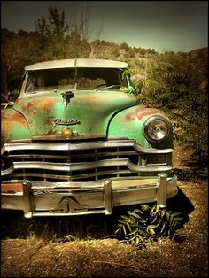 Abandoned Cars Regained by Nature                                                                                                                                                                                 More