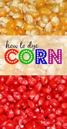 to Dye Corn for Richly Colored Popcorn Kernels How to Dye Corn Kernels from www.fun-a-How to Dye Corn Kernels from www. Sensory Tubs, Sensory Boxes, Sensory Activities, Sensory Play, Toddler Activities, Classroom Activities, Circus Activities, Fall Sensory Bin, Sensory Diet