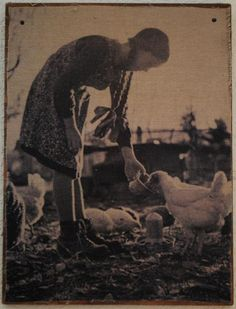 .antique photo... feeding chickens