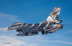F16 tiger