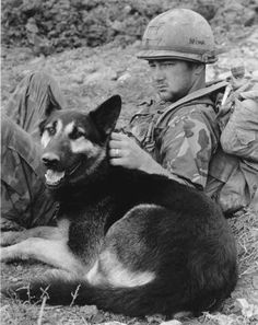 """Spec.4 Rayford Brown and his tracker dog relax for a moment at Fire-Base Alpha Four, a US outpost near the DMZ in south Vietnam, 2 Jan 1971."""