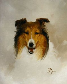 Original Oil painting of a rough collie dog by by johnspaintings, $45.00