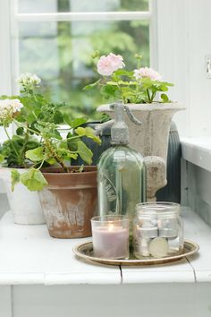 great way to incorporate your seltzer bottles into your decor