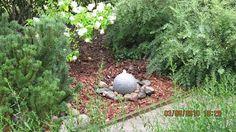 Puutarha - Pihan rakenteet - Vesiaiheet - Suihkulähde