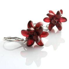 kacenkag / Morské hviezdy červené