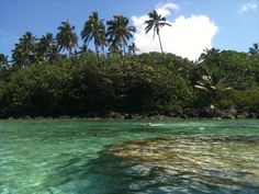 imagine yourself snorkeling...