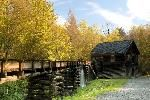 Mingus Mill, located just off Newfound Gap Road, is actually a working mill where you can purchase cornmeal and other items to take home.