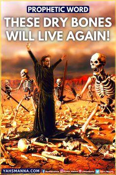 Deuteronomy 6 4, Ezekiel 37, Dry Bones, Happy Again, Speak Life, Bible Teachings, Israel, Bible Verses, Inspirational Quotes
