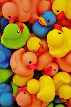 Rubber Duckies - this would be a cute poster for Mils' room since she loves them so much