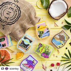 #Repost @scentsy with @repostapp ・・・ Escape to Habana. 🌴🍍💃 #HabanaSpirit ¡Shop the new collection! (👉link in profile) #FragranceIs #escape #paradise #tropical